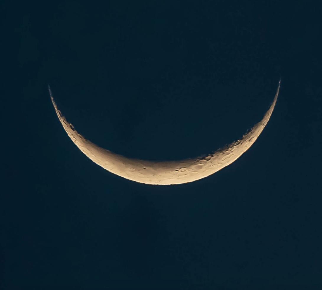 Luna Dragonwell